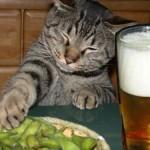 飲んで〜飲んで〜飲まれて〜